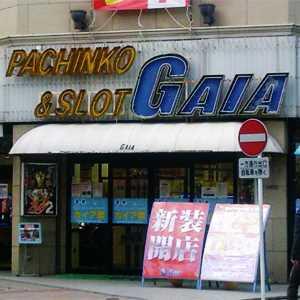 ガイア志木店