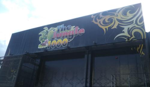 The Jungle 1000