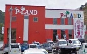 P-LAND2