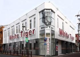 ホワイト タイガー